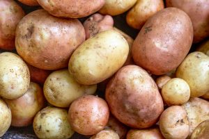Vađenje Šargarepe i Mladog Krompira